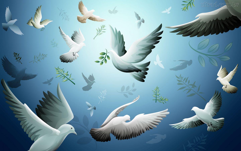 pomba_paz